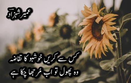 umair-shehzad-poetry1