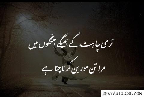 Mast Shayari Mast Poetry Mast Shayari Pic Mast Shayari Image Urdu